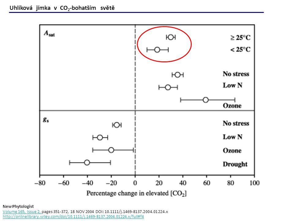 Uhlíková jímka v CO2-bohatším světě