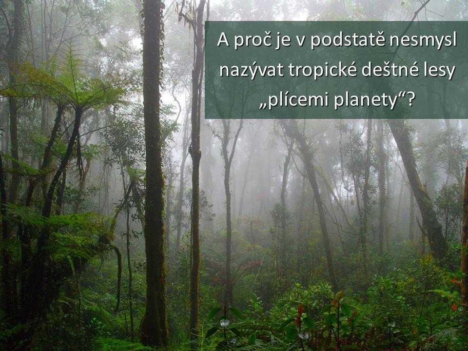"""A proč je v podstatě nesmysl nazývat tropické deštné lesy """"plícemi planety"""