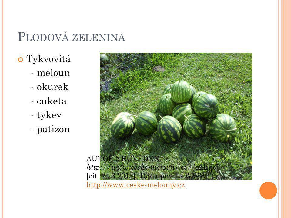Plodová zelenina Tykvovitá - meloun - okurek - cuketa - tykev