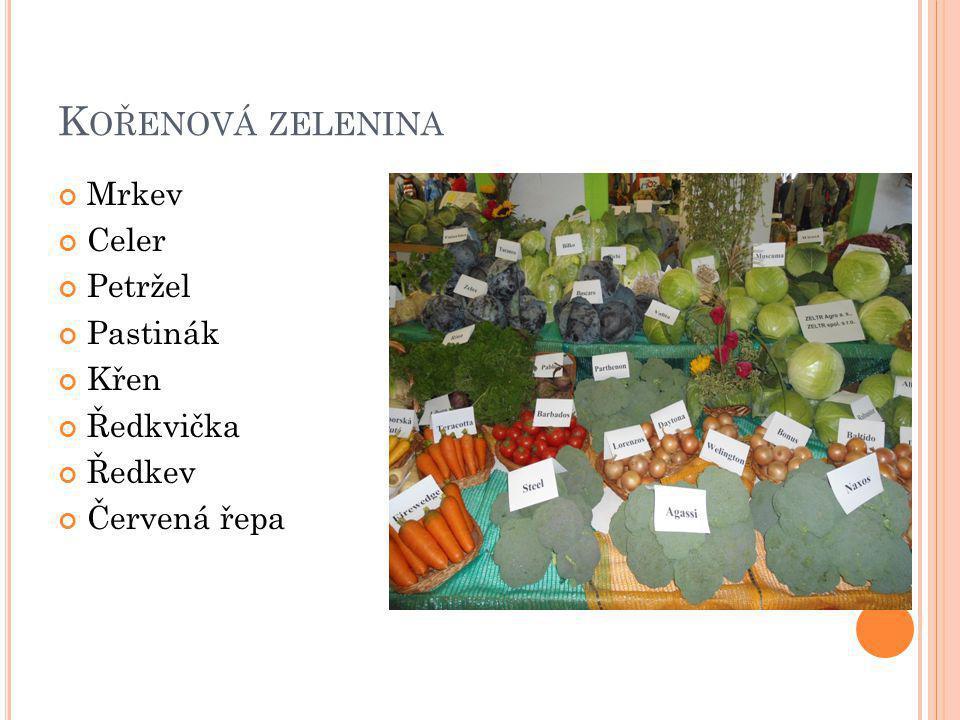 Kořenová zelenina Mrkev Celer Petržel Pastinák Křen Ředkvička Ředkev