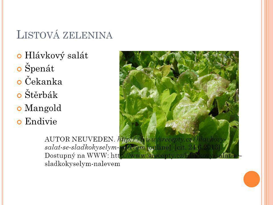Listová zelenina Hlávkový salát Špenát Čekanka Štěrbák Mangold Endivie