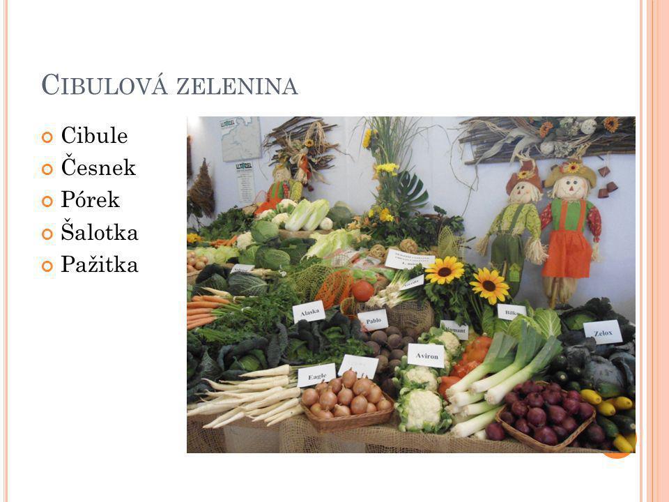 Cibulová zelenina Cibule Česnek Pórek Šalotka Pažitka