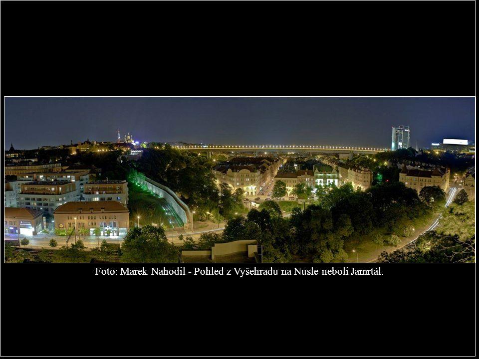 Foto: Marek Nahodil - Pohled z Vyšehradu na Nusle neboli Jamrtál.