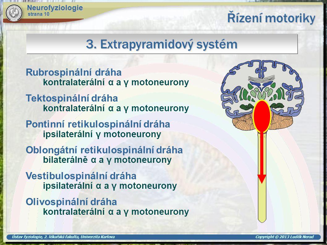 3. Extrapyramidový systém