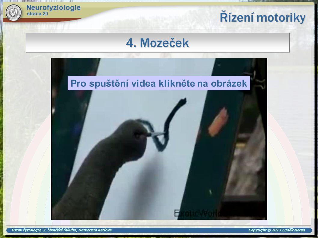 Řízení motoriky 4. Mozeček Pro spuštění videa klikněte na obrázek