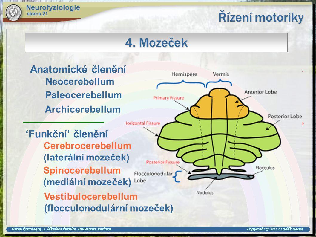 Řízení motoriky 4. Mozeček Anatomické členění 'Funkční' členění