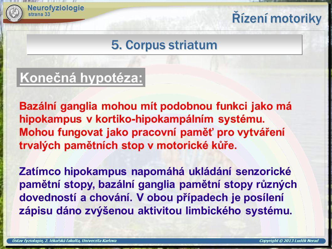 Řízení motoriky 5. Corpus striatum Konečná hypotéza: