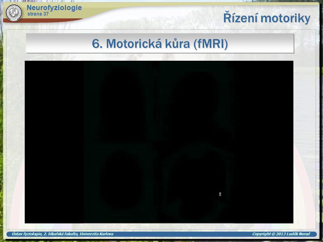 Řízení motoriky 6. Motorická kůra (fMRI) Neurofyziologie strana 37