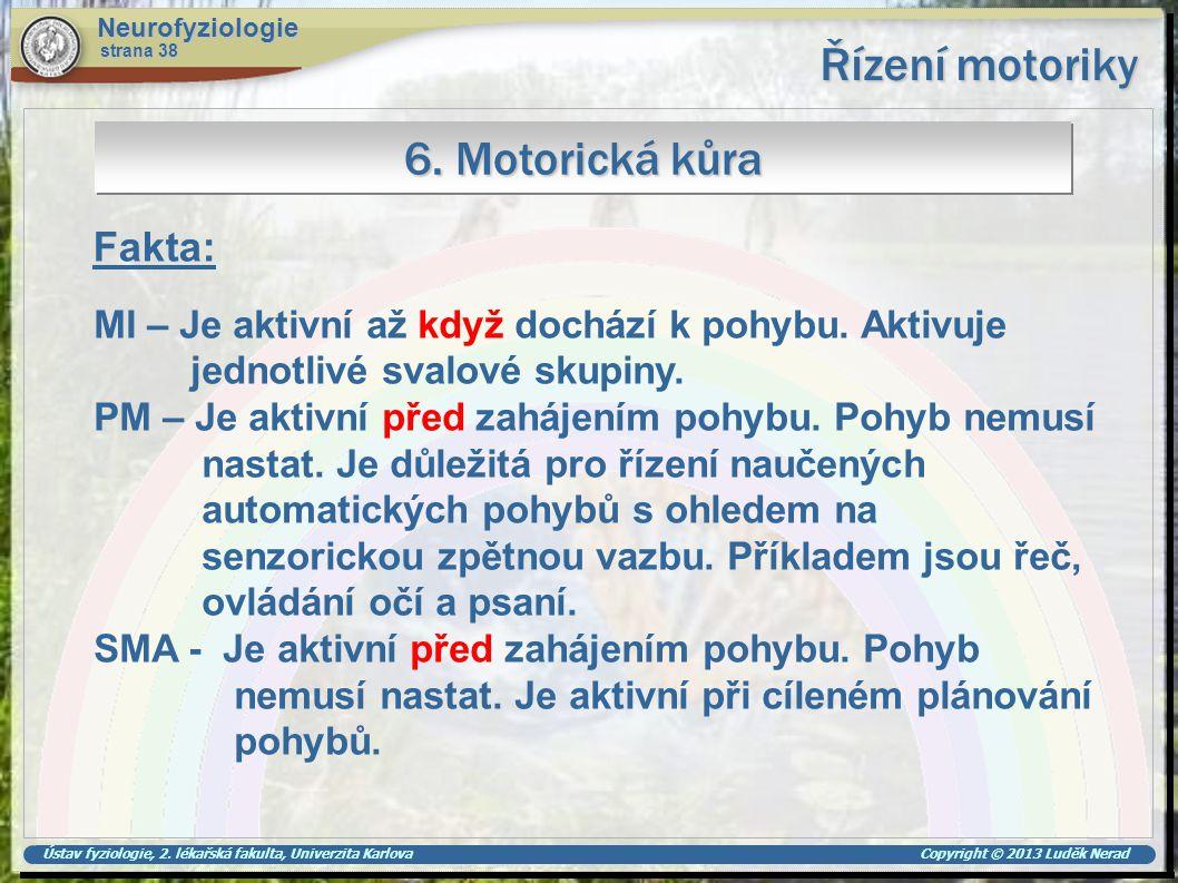 Řízení motoriky 6. Motorická kůra Fakta: