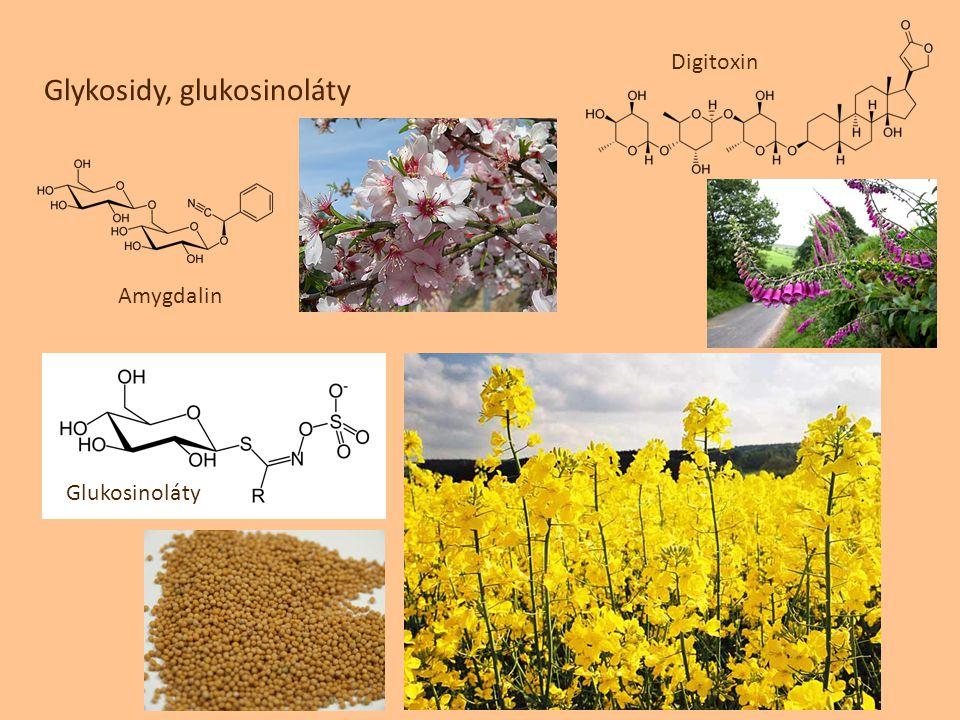 Glykosidy, glukosinoláty
