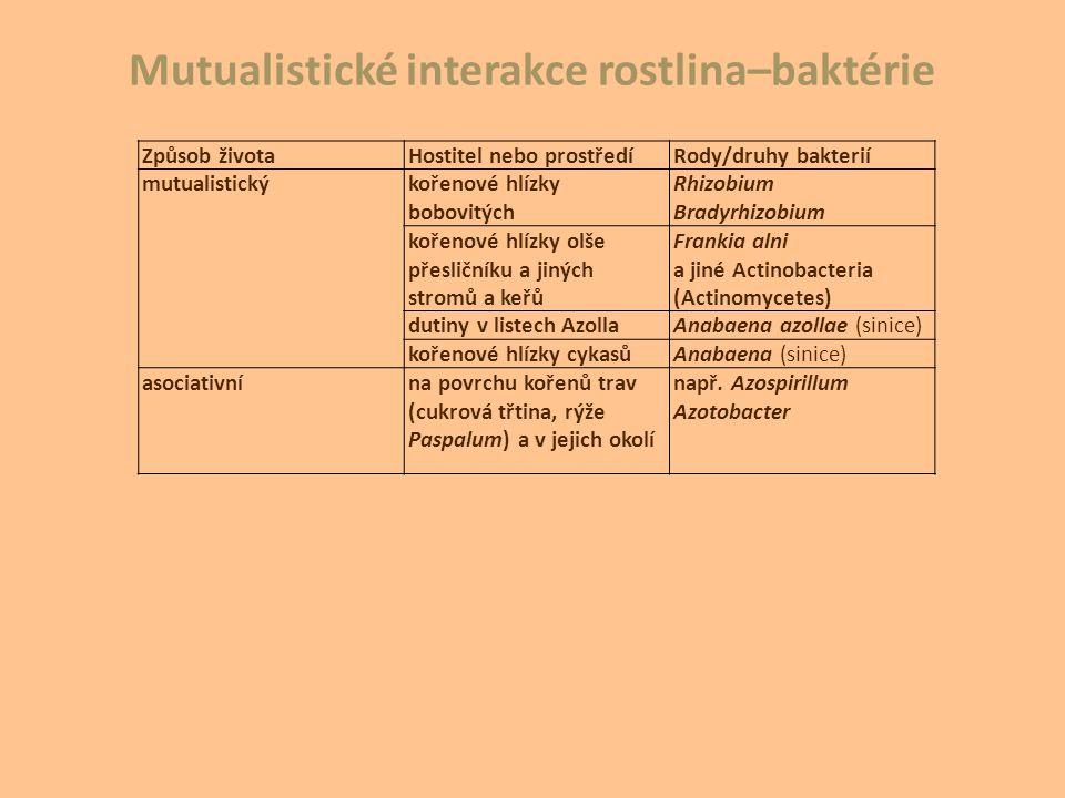 Mutualistické interakce rostlina–baktérie