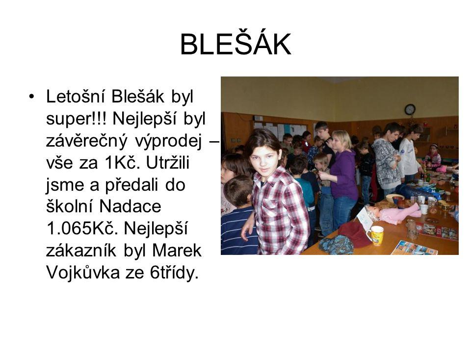 BLEŠÁK
