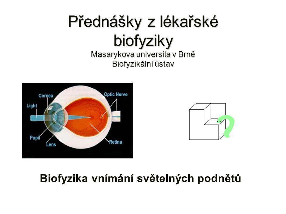 Biofyzika vnímání světelných podnětů