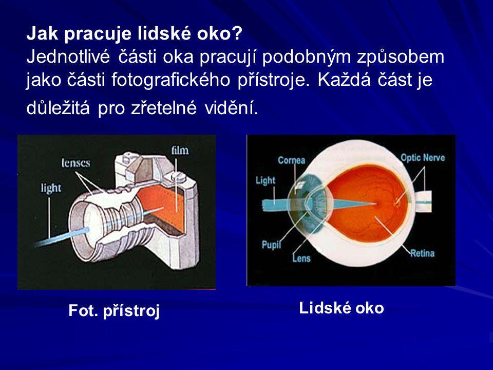 Jak pracuje lidské oko Jednotlivé části oka pracují podobným způsobem jako části fotografického přístroje. Každá část je důležitá pro zřetelné vidění.