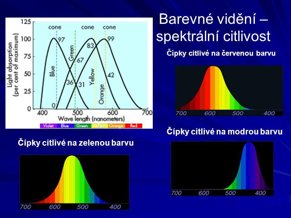 Barevné vidění – spektrální citlivost