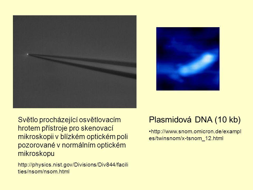 Světlo procházející osvětlovacím hrotem přístroje pro skenovací mikroskopii v blízkém optickém poli pozorované v normálním optickém mikroskopu