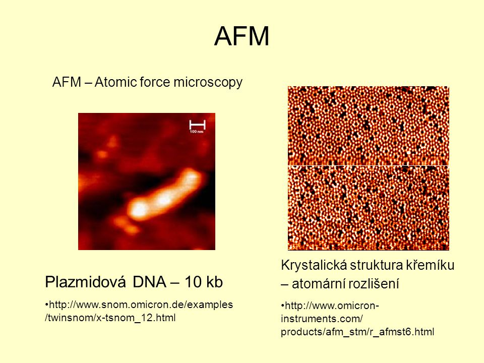 AFM Plazmidová DNA – 10 kb AFM – Atomic force microscopy
