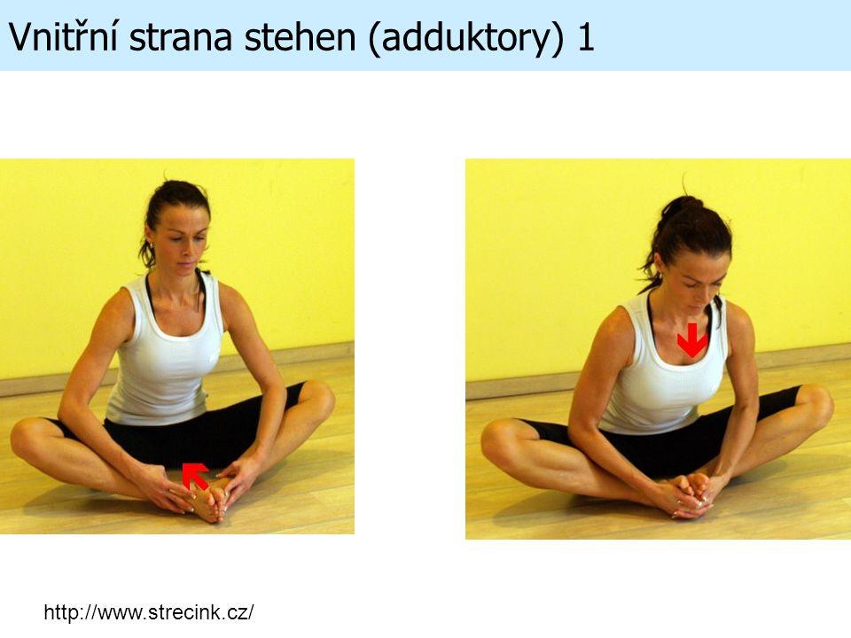 Vnitřní strana stehen (adduktory) 1