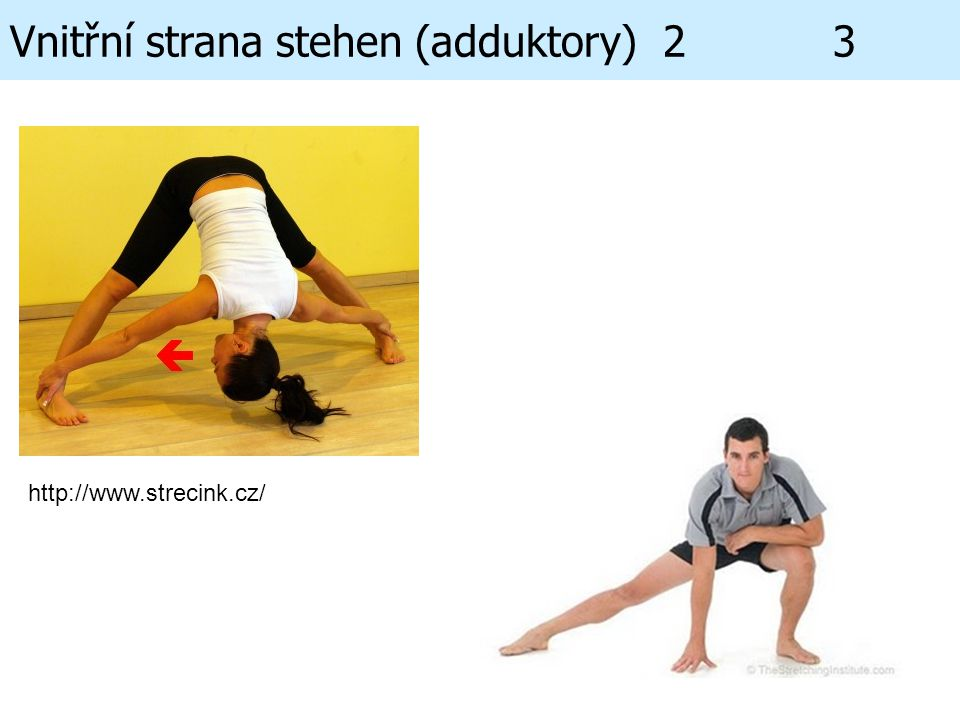 Vnitřní strana stehen (adduktory) 2 3