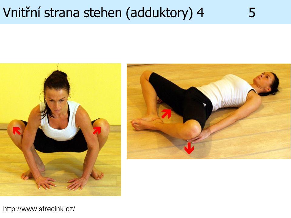 Vnitřní strana stehen (adduktory) 4 5