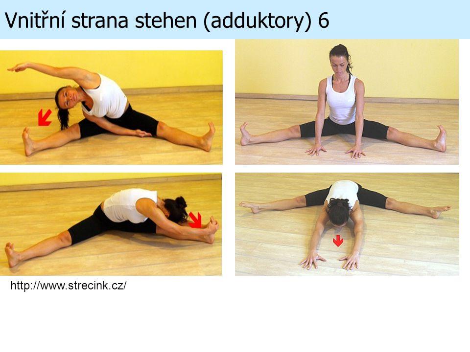 Vnitřní strana stehen (adduktory) 6