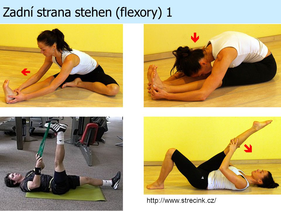 Zadní strana stehen (flexory) 1