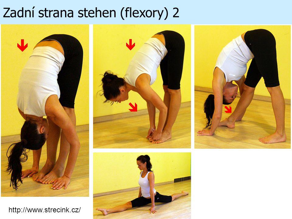 Zadní strana stehen (flexory) 2