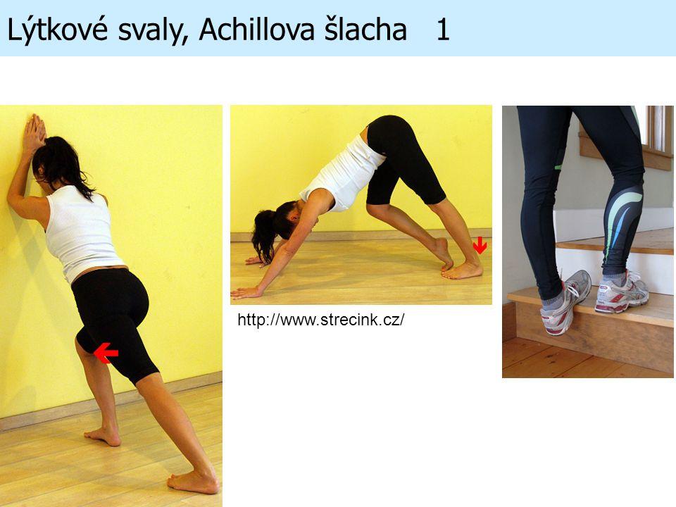 Lýtkové svaly, Achillova šlacha 1