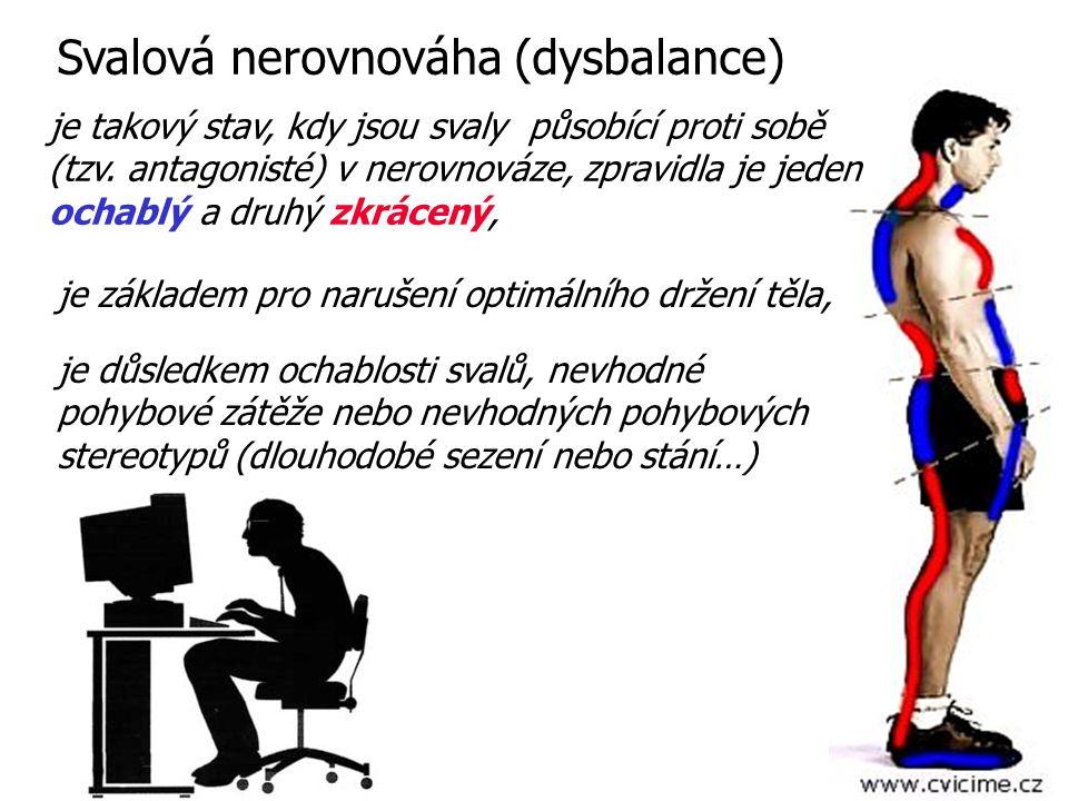 Svalová nerovnováha (dysbalance)