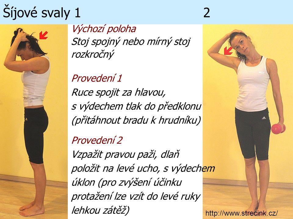 Šíjové svaly 1 2 Výchozí poloha Stoj spojný nebo mírný stoj rozkročný