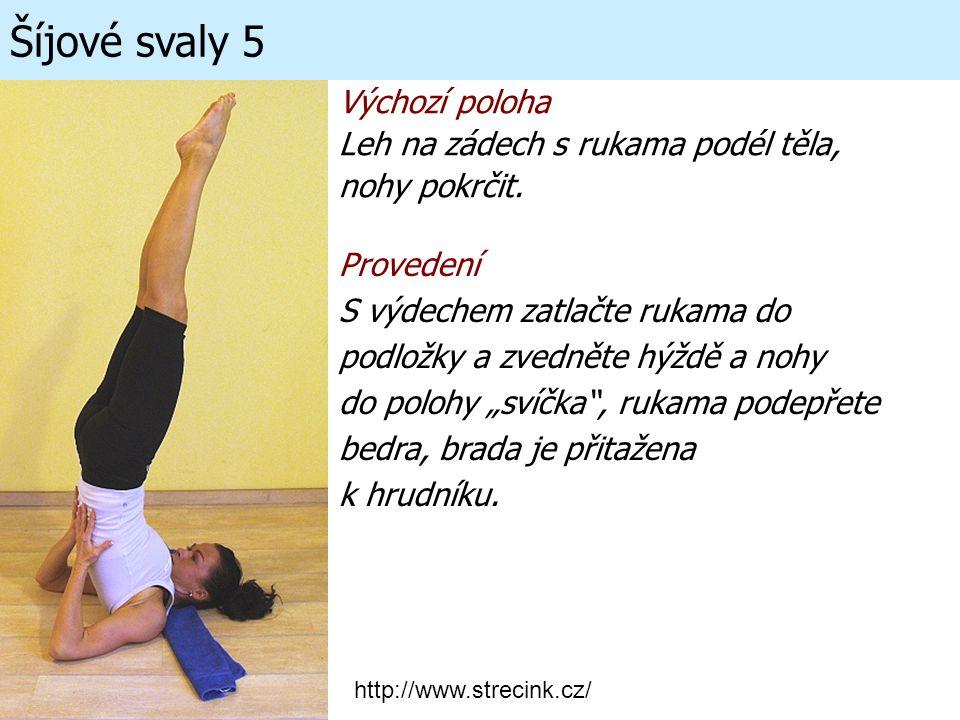 Šíjové svaly 5 Výchozí poloha Leh na zádech s rukama podél těla,