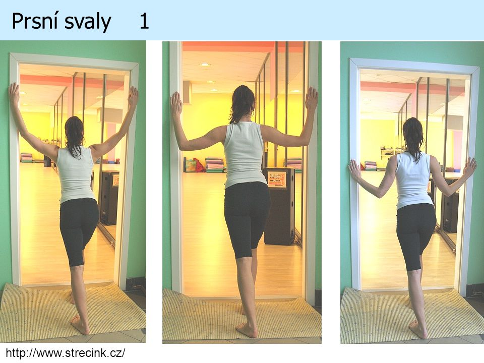 Prsní svaly 1 http://www.strecink.cz/