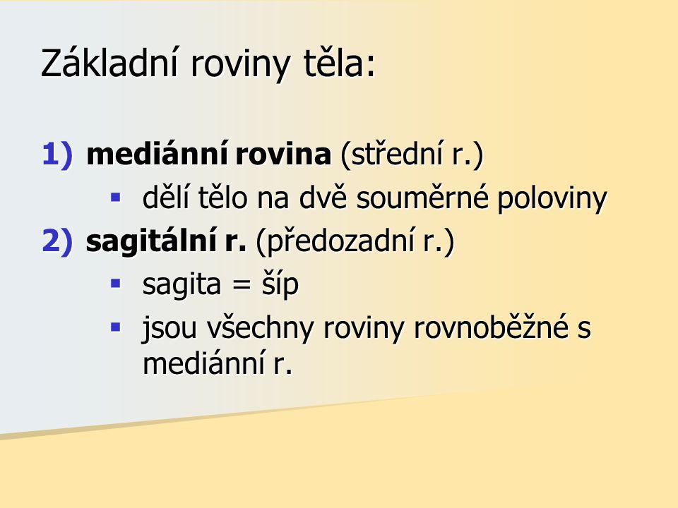 Základní roviny těla: mediánní rovina (střední r.)
