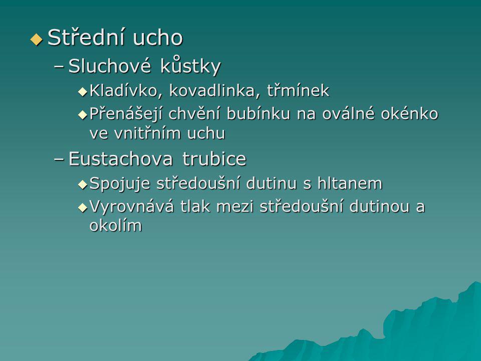 Střední ucho Sluchové kůstky Eustachova trubice