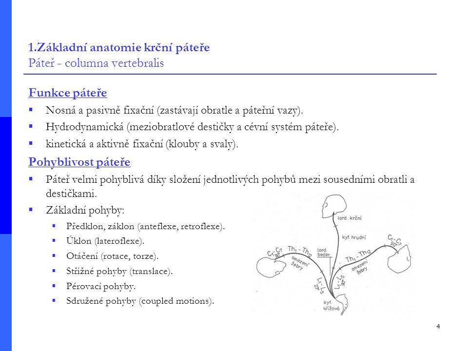 1.Základní anatomie krční páteře Páteř - columna vertebralis
