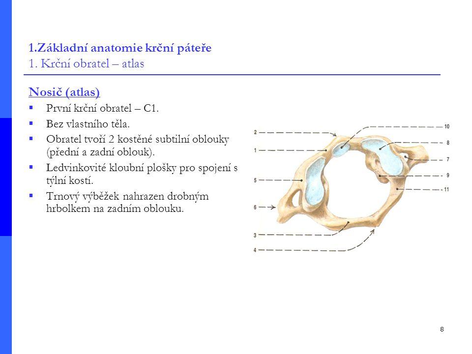 1.Základní anatomie krční páteře 1. Krční obratel – atlas