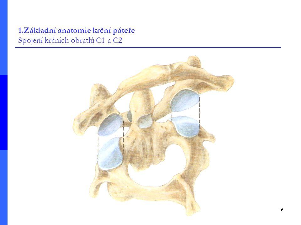 1.Základní anatomie krční páteře Spojení krčních obratlů C1 a C2
