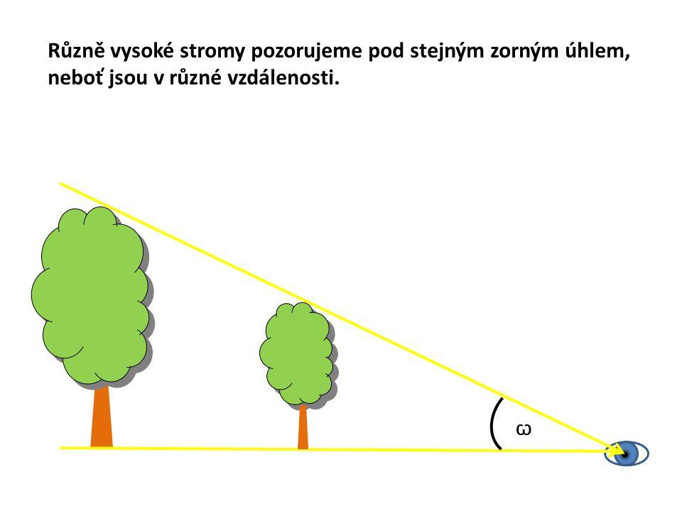 Různě vysoké stromy pozorujeme pod stejným zorným úhlem,