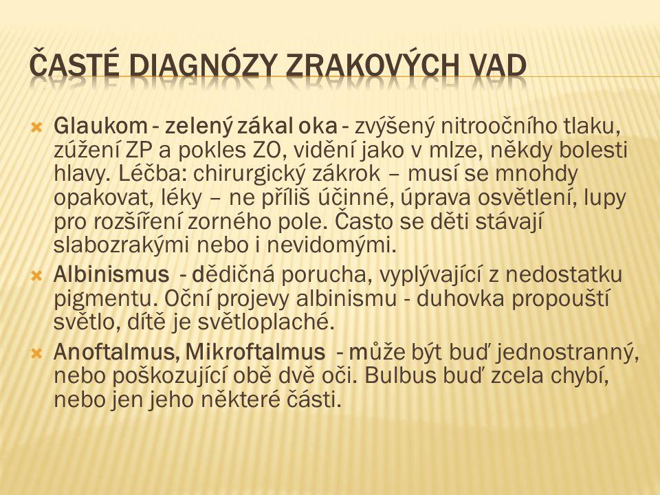 Časté diagnózy Zrakových vad