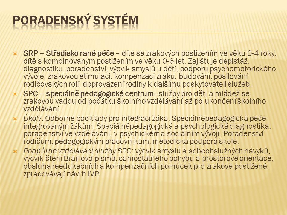 Poradenský systém