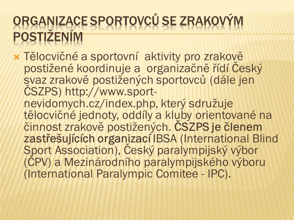 Organizace sportovců se zrakovým postižením