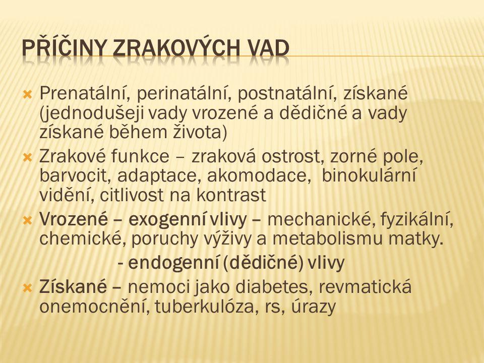 PŘÍČINY ZRAKOVÝCH VAD Prenatální, perinatální, postnatální, získané (jednodušeji vady vrozené a dědičné a vady získané během života)