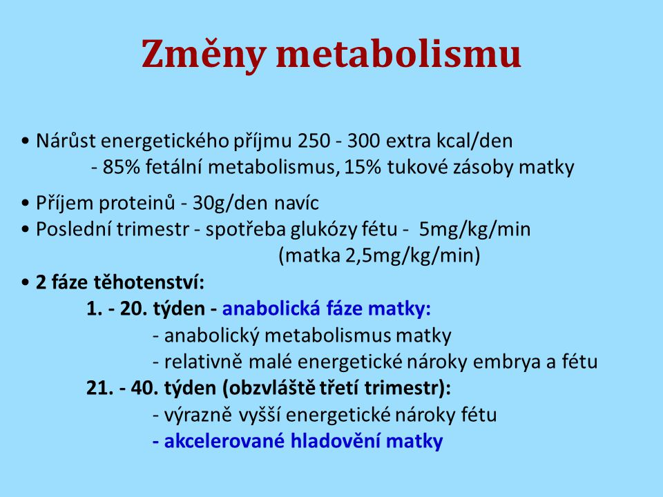 Změny metabolismu Nárůst energetického příjmu 250 - 300 extra kcal/den