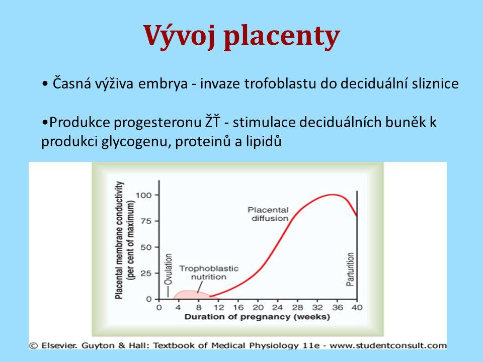 Vývoj placenty Časná výživa embrya - invaze trofoblastu do deciduální sliznice.