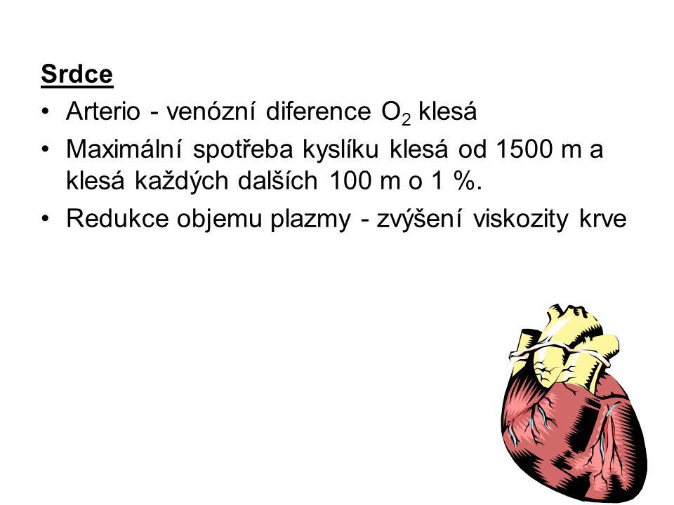 Srdce Arterio - venózní diference O2 klesá. Maximální spotřeba kyslíku klesá od 1500 m a klesá každých dalších 100 m o 1 %.