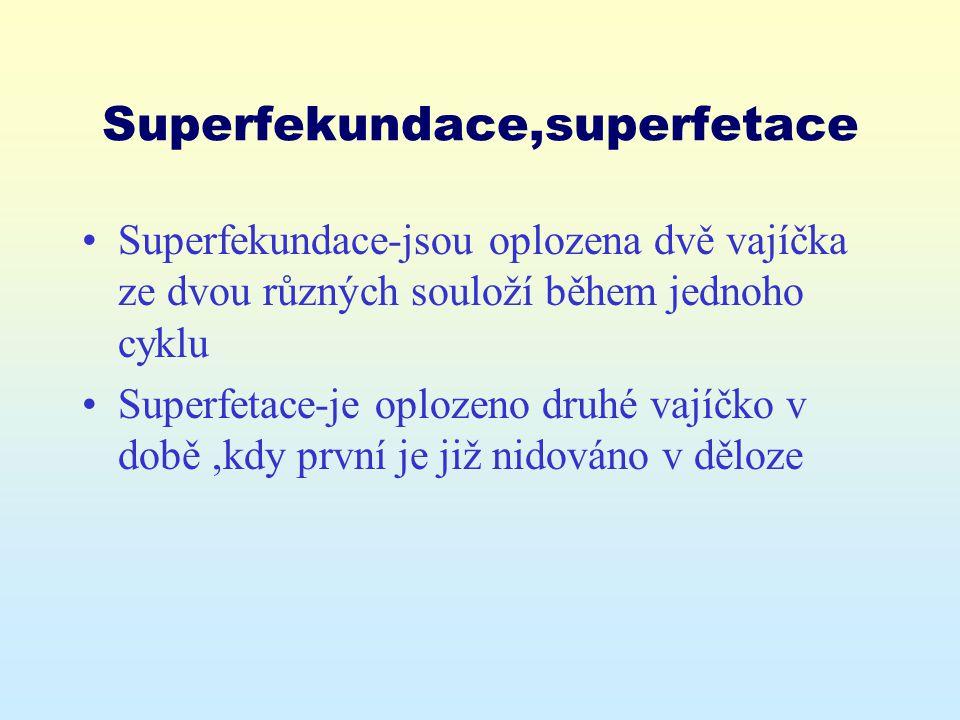 Superfekundace,superfetace