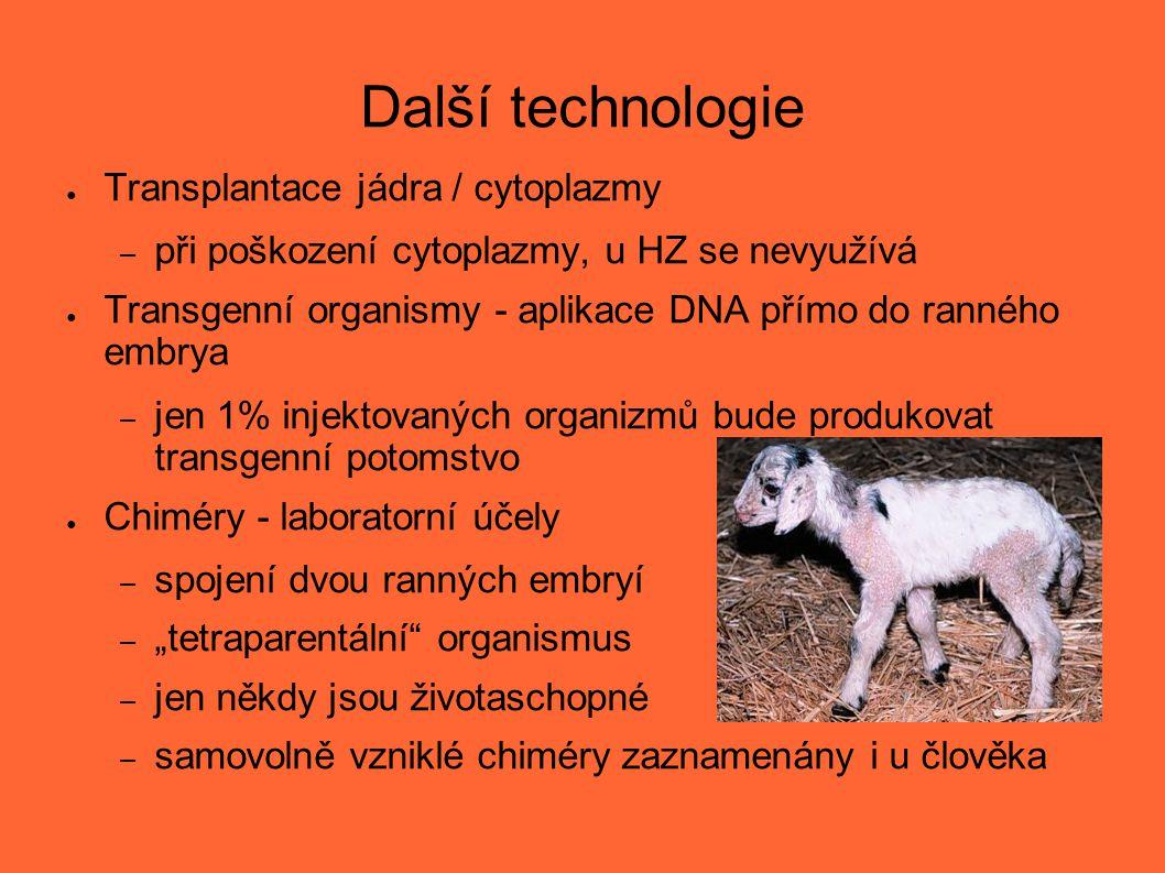 Další technologie Transplantace jádra / cytoplazmy