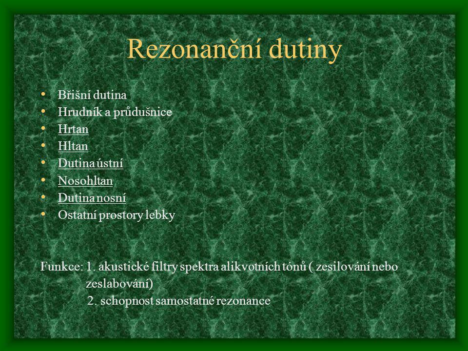 Rezonanční dutiny Břišní dutina Hrudník a průdušnice Hrtan Hltan