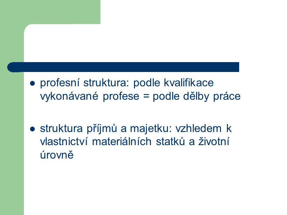 profesní struktura: podle kvalifikace vykonávané profese = podle dělby práce
