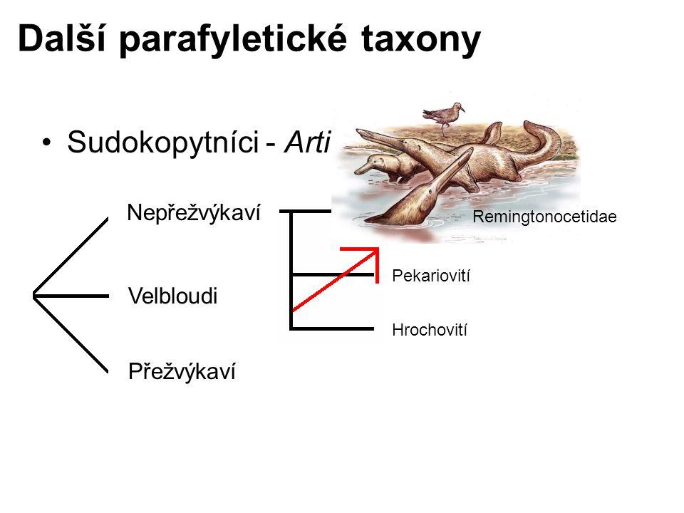Další parafyletické taxony